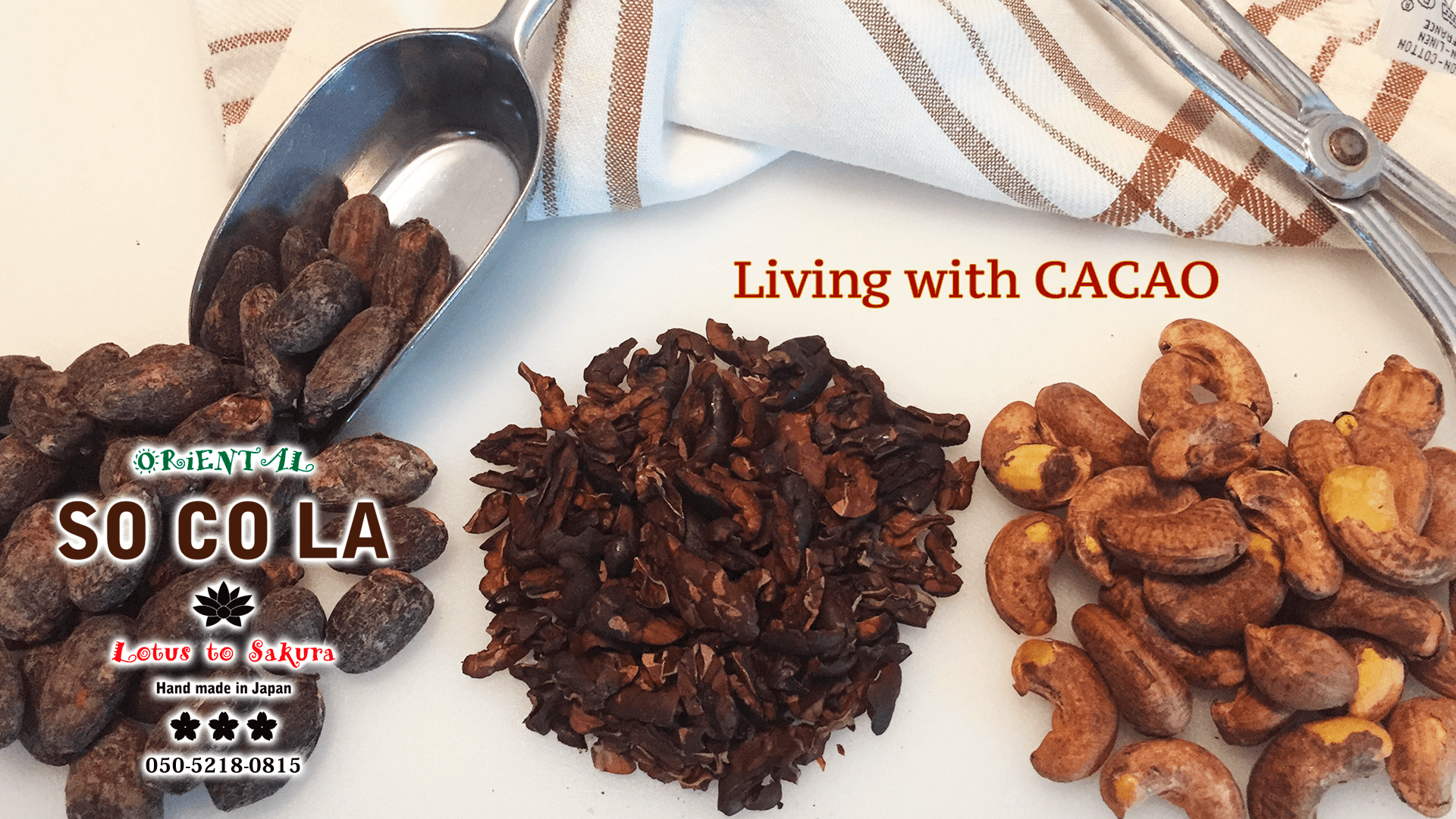 SOCOLA Lotus to Sakura Living in CACAO
